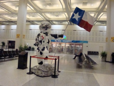 Texan Space Cow